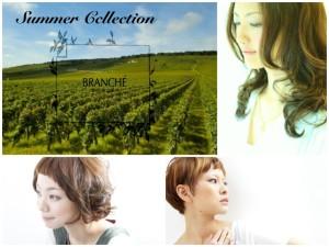 branche_summer