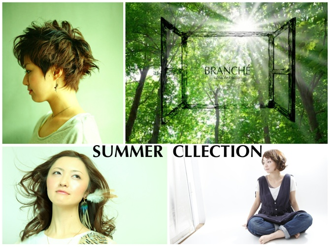 branche_summer2_2